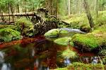 Krásný potok.