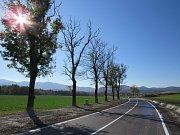 Bez aleje, zato širší. Nová silnice z Raspenavy na Krásný Les je po rozšíření pro řidiče bezpečnější.
