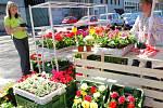 Nová městská tržnice v Liberci.
