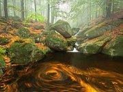 Podzim na Černém potoce.