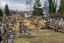 Kácení stromů na hřbitově v horním Růžodole v Liberci.