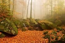 Podzimní jinotaj.