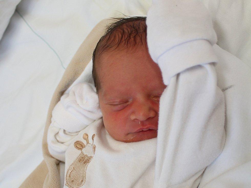 Nella Lebrušková. Narodila se 26. ledna v liberecké porodnici rodičům Martině Gregorové a Vítu Lebruškovi z Nového Boru. Vážila 2,6 kg a měřila 48 cm.