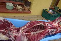 Chovatel ze Semilska nelegálně prodával jehněčí maso a výrobky.