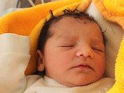 Delia Haluzová se narodila 23. února. Radost z ní mají Renáta Haluzová a Ionut – Andrei Spaniuc z Třeboně. Měřila 48 centimetrů a vážila 2780 gramů.