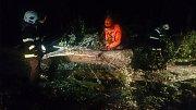 V noci odstraňovali padlé stromy po bouři také hasiči z Hamru na Třeboňsku.
