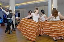 Ples Oblastní charity v Třeboni.