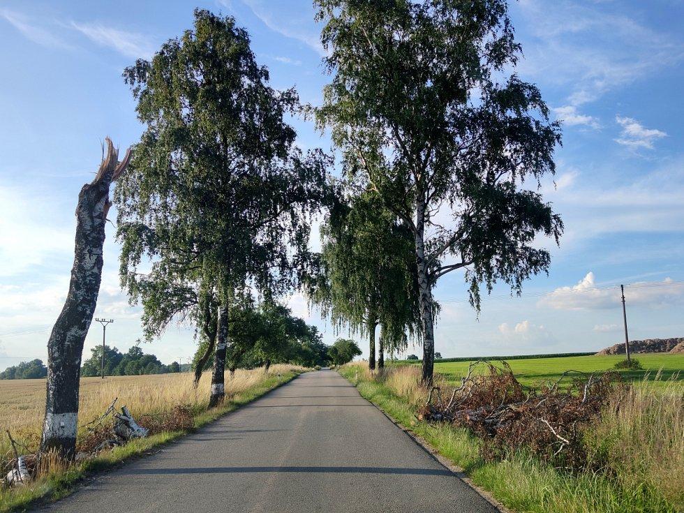 Silná bouřka na Jindřichohradecku tento týden lámala a vyvracela stromy. U Pluhova Žďáru vývraty poškodily i silnici. Popadané stromy a větve jsou i na trase na Červenou Lhotu.