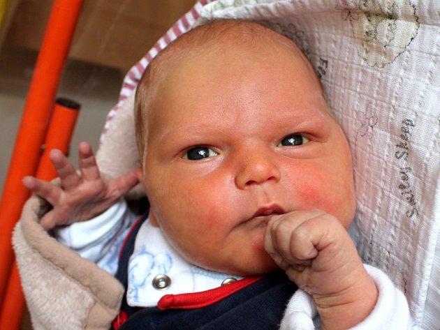 Štěpán Vokuš se narodil 13. července Daně Dvořákové a Pavlu Vokušovi z Nekrasína. Měřil 50 centimetrů a vážil 3920 gramů.