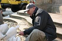 Sochy na Mariánském sloupu na náměstí Míru v J. Hradci se dočkaly oprav