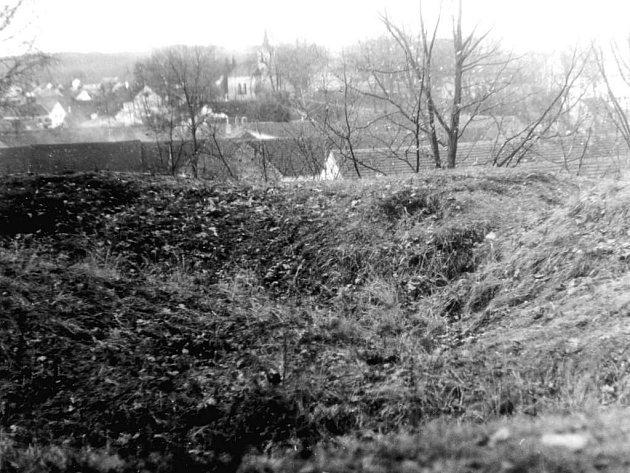 Pohled na travou porostlé zbytky zdí lásenické tvrze. Foceno na  podzim 1983