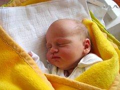 Lucie Lechnerová  se narodila 31. března  Dagmar a Petrovi Lechnerovým z Třeboně . Vážila  2970 gramů.