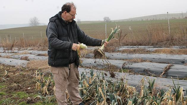 Petr Mastný, zelinář z farmy v Doňově.