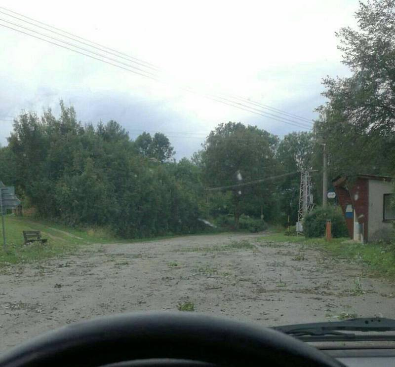 S popadanými stromy a větvemi bojovali také v Horní Radouni.