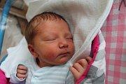 Veronika Dlužanská se narodila 17. listopadu Haně Zemanové a Pavlu Dlužanskému ze Suchdola nad Lužnicí. Měřila 50 centimetrů a vážila 2670 gramů.