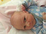 Kristýna Čapková, Jarošov nad Nežárkou.Narodila se 2. října Lucii a Martinu Čapkovým, vážila 3080 gramů a měřila 47 centimetrů.