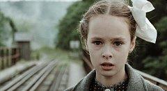 Příběh filmu Výletnice pojednává o jedenáctileté osiřelé dívce Mariji, která unikne z deportačního vlaku a vydává se na 6000 kilometrů dlouhou cestu zpět domů do své vlasti.