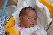 Mariana Pilná, Dvorce.Narodila se 16. listopadu Ivaně a Karlu Pilným,vážila 3740 gramů a měřila 51 centimetrů.