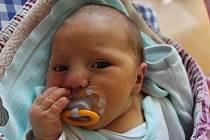 Ondřej Šívr z Nové Včelnice se narodil 26. června v jindřichohradecké porodnici. Měřil 50 centimetrů a vážil 3700 gramů.