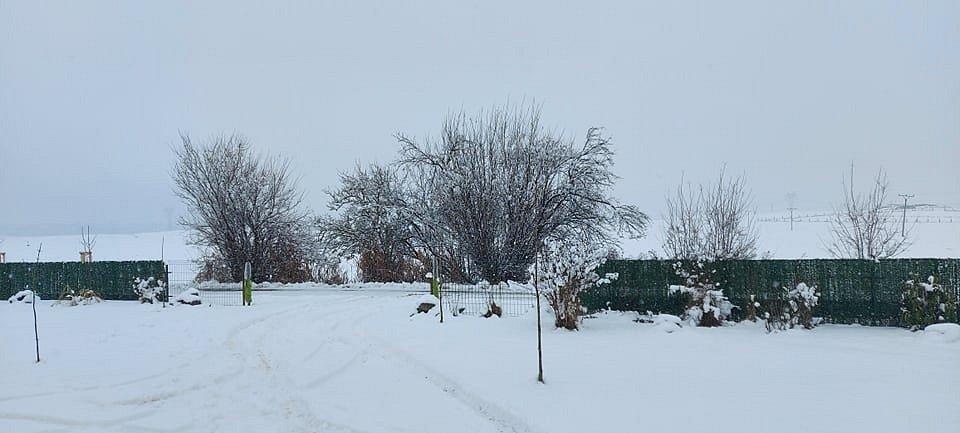Sníh v Novosedlech nad Nežárkou 6. 1. 2021.