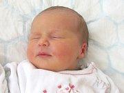 Sára Panáková se narodila 7. ledna Soně Homolové a Davidu Panákovi z Jindřichova Hradce. Měřila 51 centimetrů a vážila 3860 gramů.