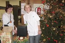 Vánoční výstava v jindřichohradecké fakultě.