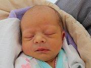 Anna Komínková se narodila 26. června Kateřině a Bohumilu Komínkovým z J. Hradce. Měřila 50 centimetrů a vážila 3030 gramů.
