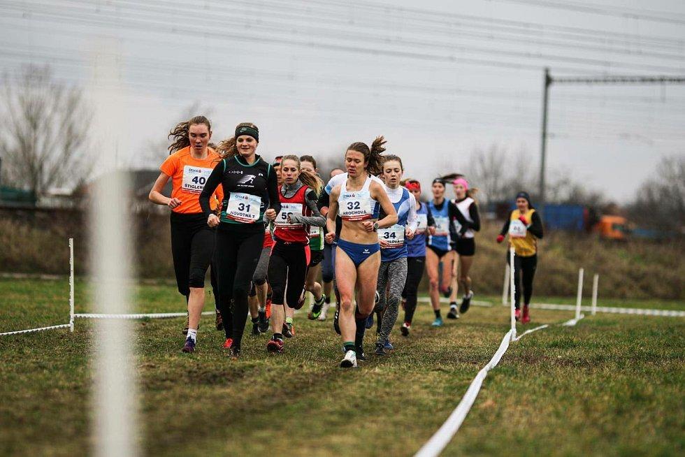 Na mistrovství republiky v přespolním běhu v Běchovicích se dařilo Pavle Schorné, která získala bronzovou medaili.