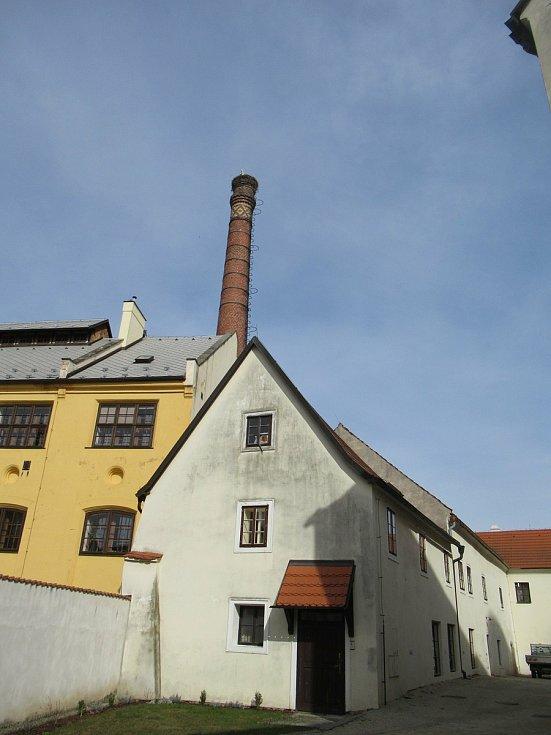Poslové jara pózovali na pivovarském komíně v centru Jindřichova Hradce v pátek 9. dubna večer.