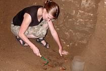 Brigádnice Radka Drápalová z J. Hradce během preparování lidských kosterních ostatků v Bílkovské kapli.