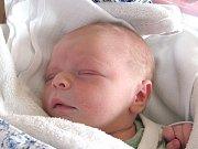 Michal Štangl se narodil 11. ledna Jitce a Jakubovi Štanglovým z Jarošova nad Nežárkou. Měřil 48 centimetrů a vážil 3290 gramů.