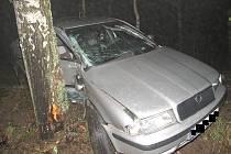 U Pluhova Žďáru se na Nový rok ráno stala tragická dopravní nehoda. Auto narazilo do stromu a řidič zemřel.