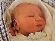 Diana Kopecká se narodila 9. února Martině a Janovi Kopeckým z Hrutkova. Měřila 52 centimetrů a vážila 3720 gramů.