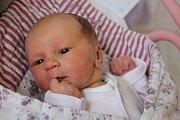 Laura Majeriková se narodila 26. srpna Kamile Bednářové a Milanu Majerikovi z Radouňky. Měřila 49 cm a vážila 3130 gramů.