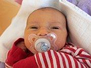 Natálie Truhlářová se narodila 16. března Lucii Reiserové a Josefu Truhlářovi z Hrutkova. Měřila 47 centimetrů a vážila 2850 gramů.