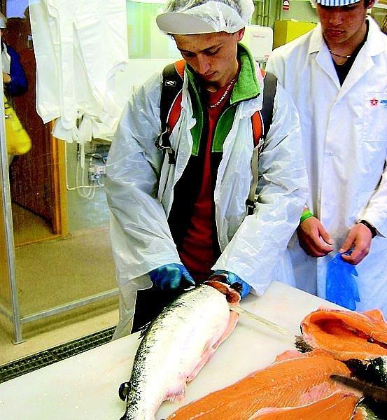 Na výměnném pobytu v Norsku si žáci třeboňské školy mohli  vyzkoušet například filetaci lososa.