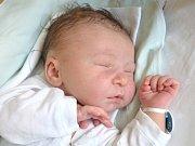 Dorota Janková z Ostojkovic se narodila 11. března v třebíčské porodnici. Měřila 49 centimetrů a vážila 3500 gramů.