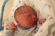 Milan Pistora se narodil 13. září Jitce Pistorové a Milanu Homolovi z Jindřichova Hradce. Měřil 50 centimetrů a vážil 3350 gramů.