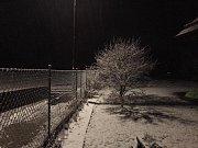 V neděli večer začalo sněžit. Polště.