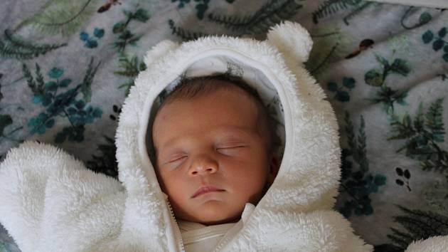 Marek Podojil, Třeboň.Narodil se 25. října Lucii Melicharové a Oldřichu Podojilovi,vážil 3840 gramů a měřil 51 centimetrů.