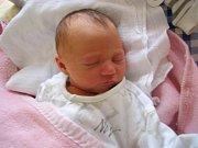 Nikol Holická  se narodila 29. března  v 0  hodin a 44 minut Lence a Petrovi Holickým z Kostelní Radouně. Vážila  2620 gramů.