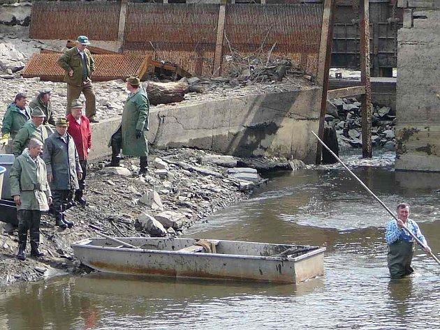Jindřichohradečtí rybáři při výlovu Vajgaru.