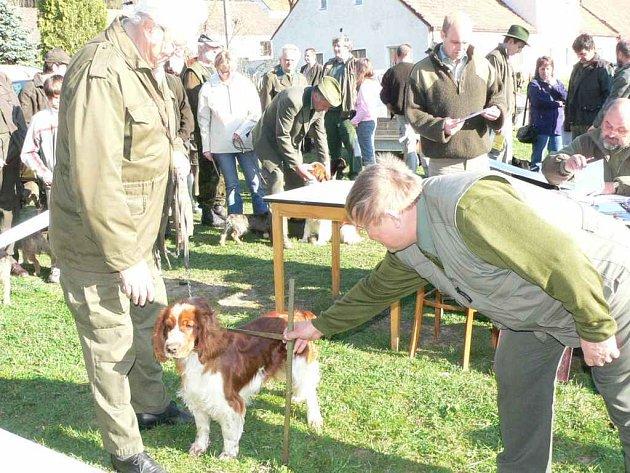 Tradiční jarní svod mladých psů loveckých plemen ve Velkém Ratmírově u J. Hradce