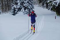 Česká Kanada v zimě láká na běžecké lyžování.