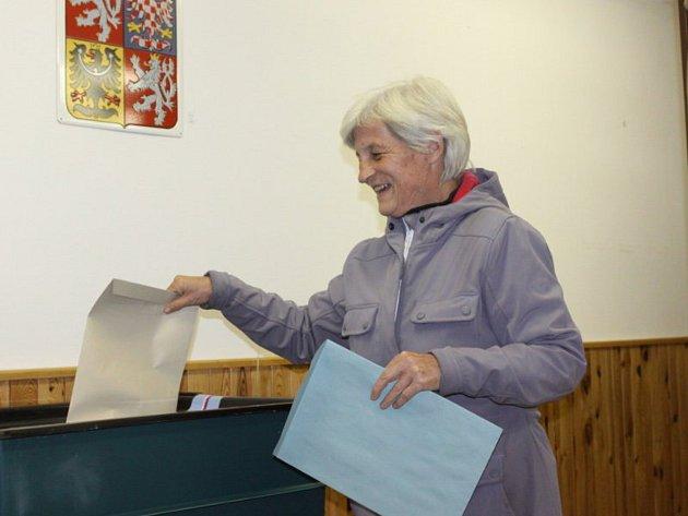 Volby na Jindřichohradecku. Ilustrační foto.