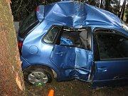 Při dopravní nehodě u Blažejova narazilo auto do stromu.