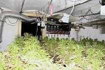 Pohled do domu v Nové Vsi nad Lužnicí, kde policisté ve středu při domovní prohlídce odhalili pěstírnu konopí.