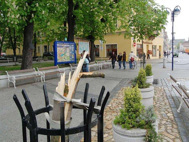 Pohled na torzo stromu, který na Masarykově náměstí v J. Hradci zlomil vandal.