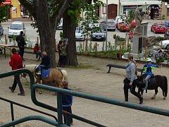 Kancnýřův sad na náměstí v Dačicích.