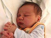 David Pokorný se narodil 8. března Martině Trávníčkové a Tomáši Pokornému z Vnorovic. Měřil 52 centimetrů a vážil 3930 gramů.